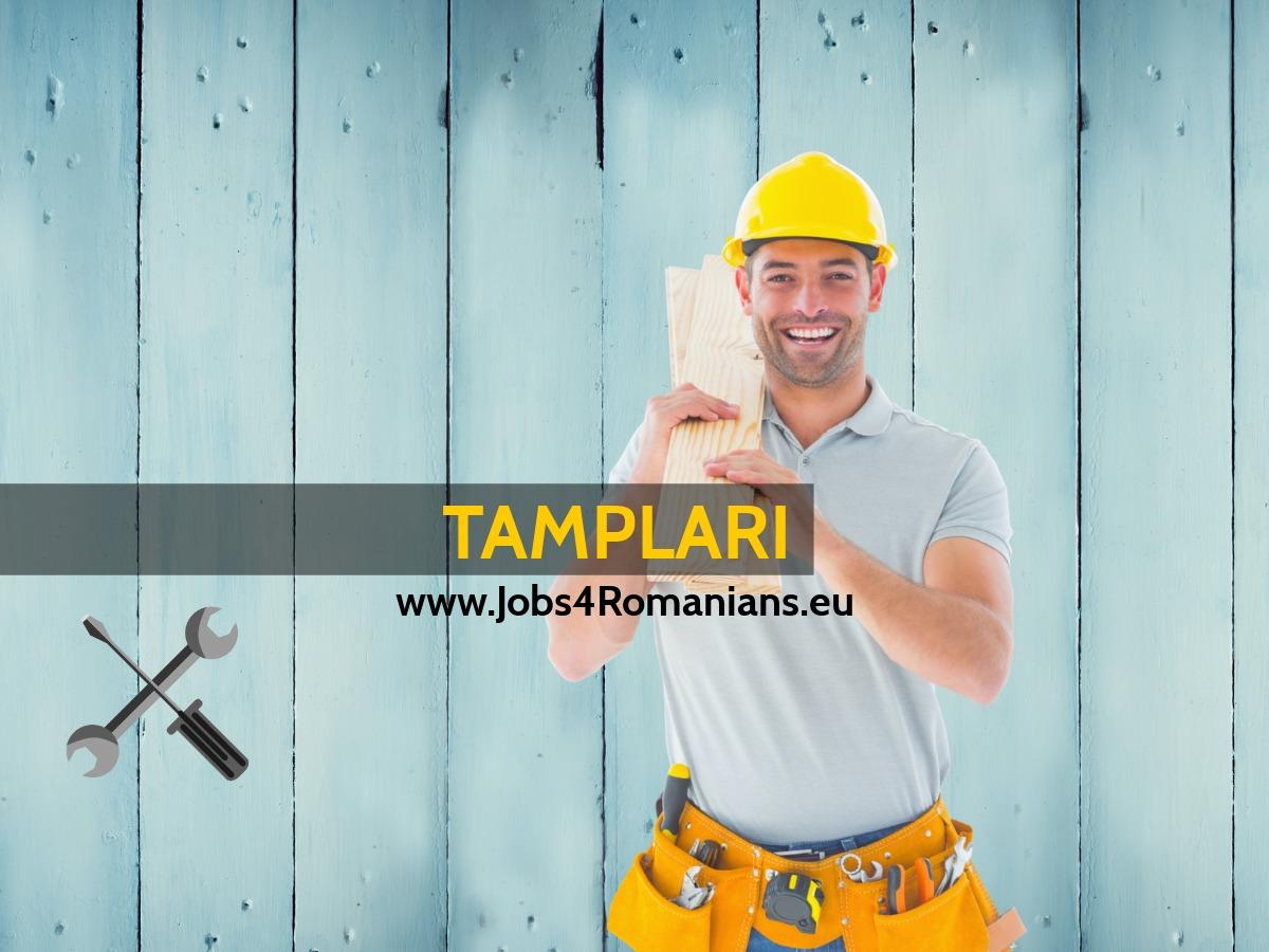 Joburi Constructori Olanda